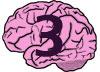 brain-3